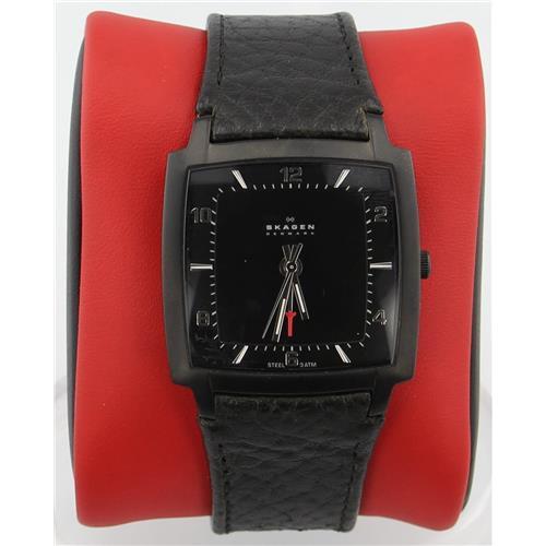 Luxury Brands Skagen 521LBLB1 768680090468 B000IZC8G6 Fine Jewelry & Watches