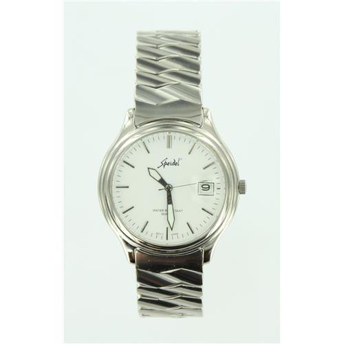 Silver Tone Expansion Watch WW00579N